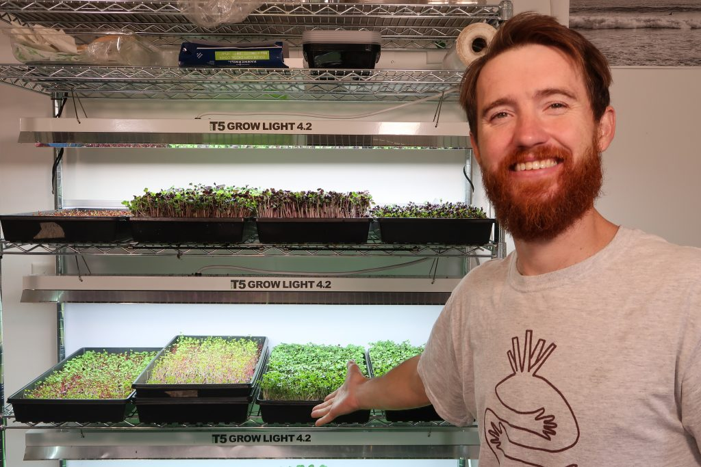 selling microgreens